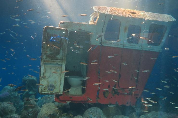 La Coruna - April 2017 - fish