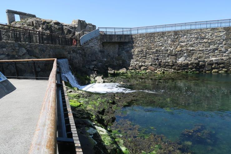 La Coruna - April 2017 - aquarium seal tank