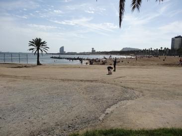 Oasis of the Seas Barcelona beach