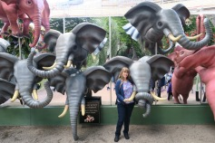 Independence of the Seas 29 June 2017 Copenhagen Tivoli Park Joanne and Elephants