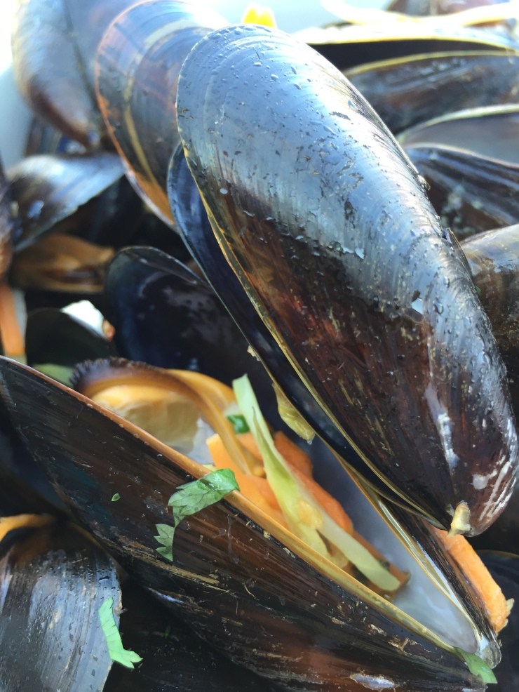 Stavanger - May 2016 - mussels